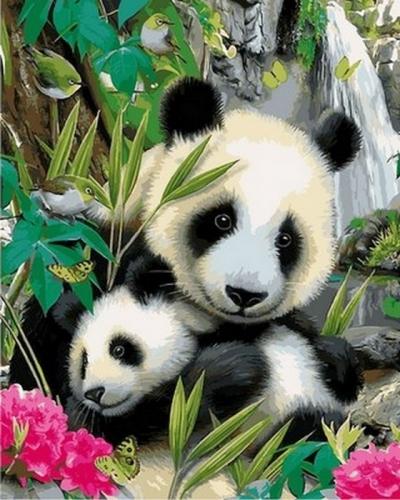 Картины по номерам Малыш панда