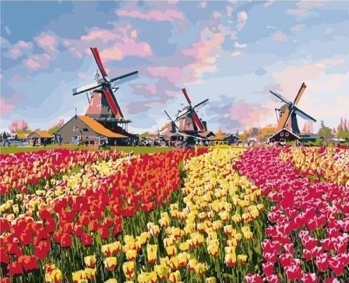 Картины по номерам Красочные тюльпаны Голландии