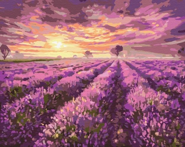Картины по номерам Лавандовый закат