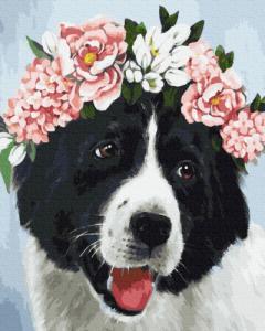 Картины по номерам Собачка в цветах