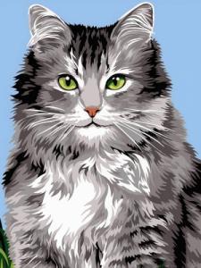 Картины по номерам Длинношёрстная кошка