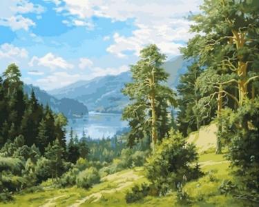 Картины по номерам Вид на реку