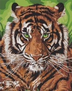 Картины по номерам Непобедимый тигр