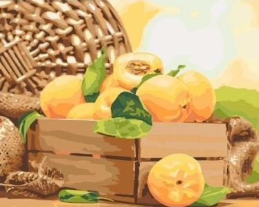 Картины по номерам Золотистый абрикос