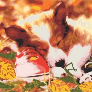 Картины по номерам Спящий малыш