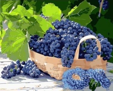 Картины по номерам Виноград в корзине