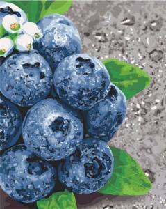 Картины по номерам Сочные плоды
