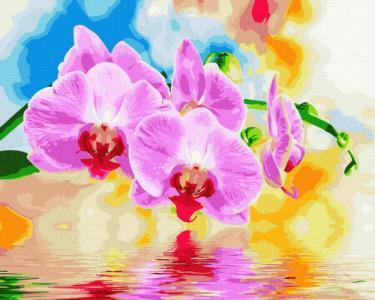 Картины по номерам Орхидея