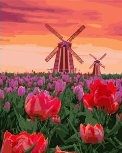 Картины по номерам Тюльпаны на закате