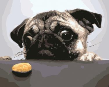 Недостижимая печенька