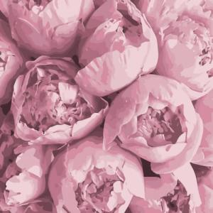 Картины по номерам Розовая нежность