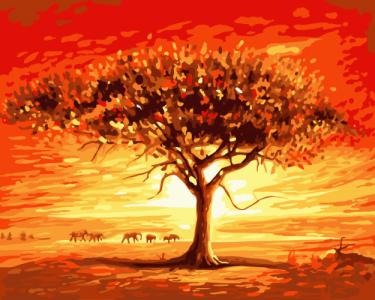 Картины по номерам Золотое солнце Африки