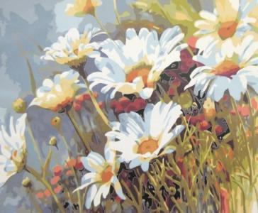 Картины по номерам Ромашковое поле