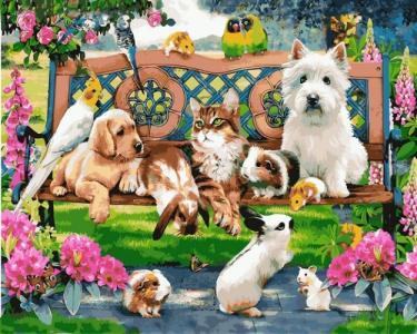 Картины по номерам Домашние животные в парке