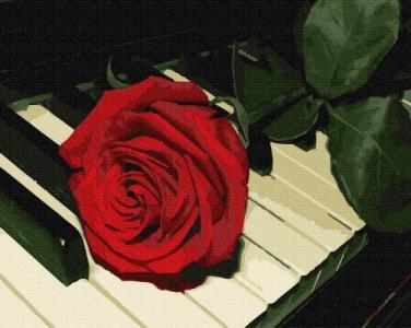 Картины по номерам Роза пианиста