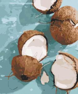 Картины по номерам Уникальный орех