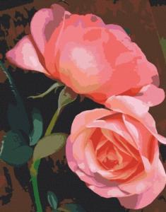 Картины по номерам Совершенные краски