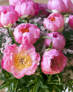 Картины по номерам Розовый шарм