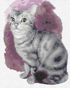 Картины по номерам Маленький котенок