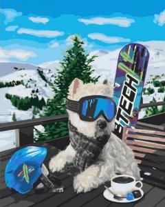 Картины по номерам Сноубордист