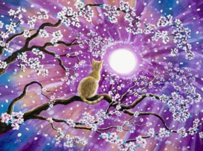 Картины по номерам Кошка на сакуре