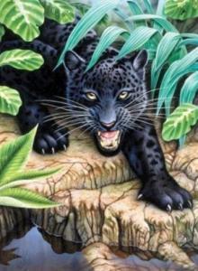 Картины по номерам Пантера
