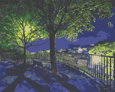 Картины по номерам Ночной парк