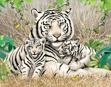 Картины по номерам Сім'я бенгальських тигрів