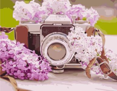 Картины по номерам Фотоаппарат с сиренью