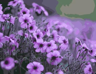 Картины по номерам Фиолетовые цветы
