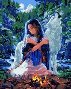 Картины по номерам Девушка с волком