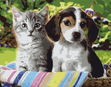 Картины по номерам Кошеня та цуценя