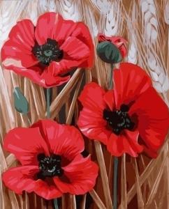 Картины по номерам Три алых цветка мака
