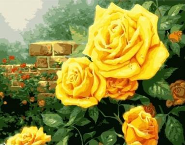 Картины по номерам Жовті троянди в саду