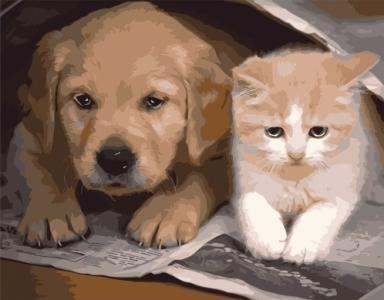 Картины по номерам Добрые друзья