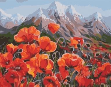 Картины по номерам Маки у горы