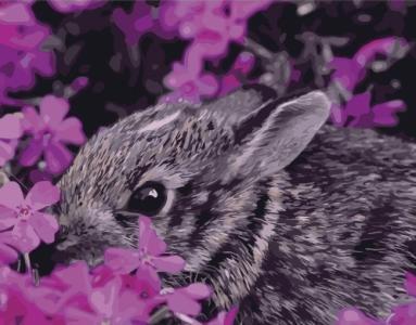 Картины по номерам Кролик в цветах