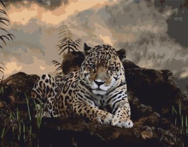 Картины по номерам Уставший леопард
