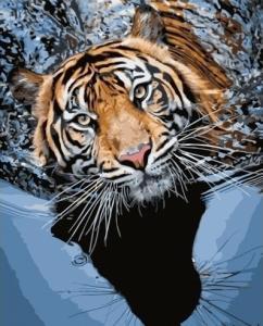 Картины по номерам Тигр в воде