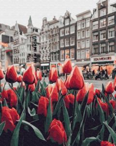 Картины по номерам Тюльпаны Амстердама
