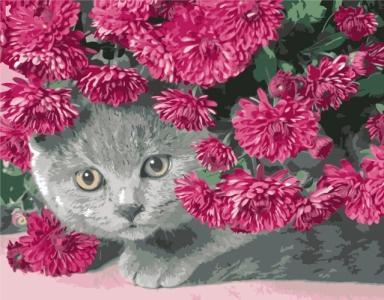Картины по номерам Серий кот в цветах