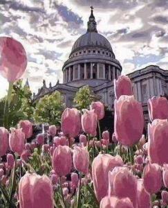 Картины по номерам Клумба тюльпанов