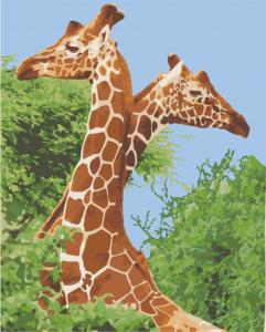 Картины по номерам Пара жирафов
