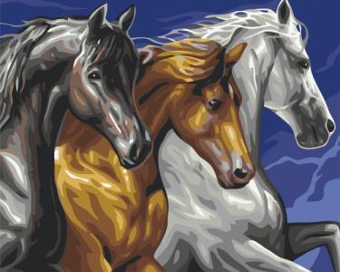 Картины по номерам Трио лошадей