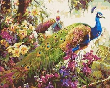 Картины по номерам Сказочные павлины