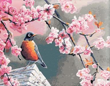 Картины по номерам Снегирь и сакура