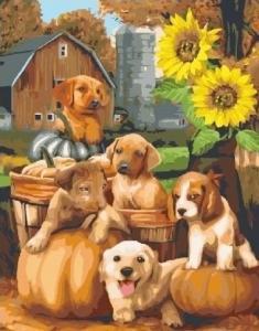 Картины по номерам Собачки у подсолнуха