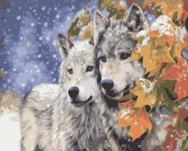 Картины по номерам Пара волков