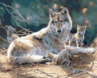 Картины по номерам Волчата