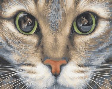 Картины по номерам Зеленоглазый котик